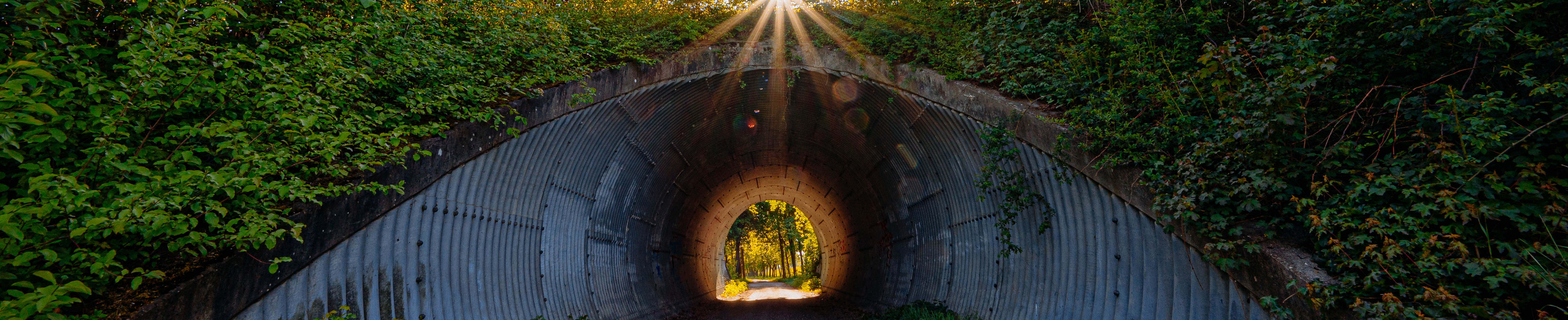 Daxl-Eiglsperger – Tunnel_2020_SLIDER_Daxl-Eiglsperger_DSC_8222